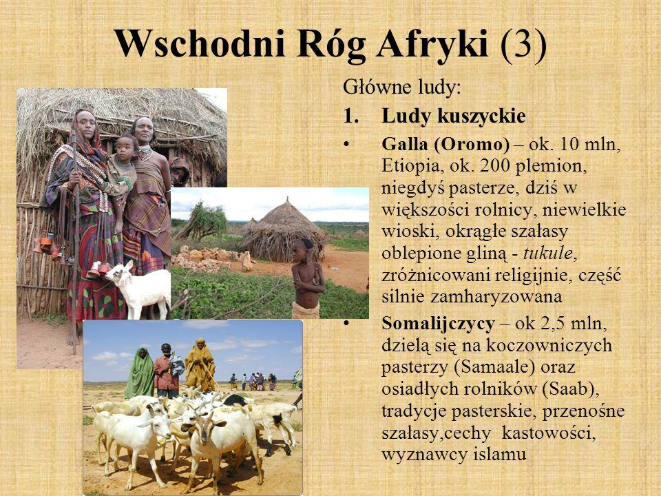 Wschodni Róg Afryki (3) Główne ludy: 1.Ludy kuszyckie Galla (Oromo) – ok. 10 mln, Etiopia, ok. 200 plemion, niegdyś pasterze, dziś w większości rolnic