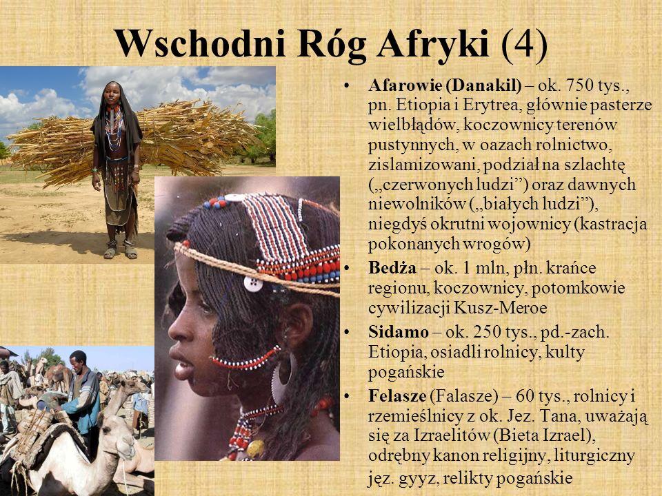 Wschodni Róg Afryki (4) Afarowie (Danakil) – ok. 750 tys., pn. Etiopia i Erytrea, głównie pasterze wielbłądów, koczownicy terenów pustynnych, w oazach