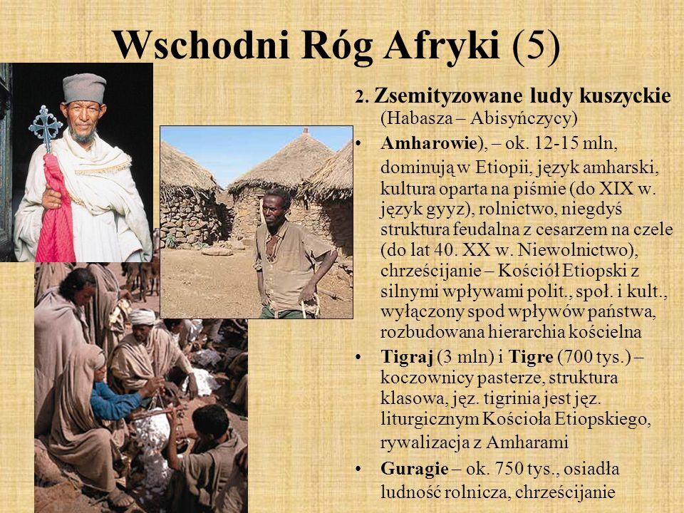 Wschodni Róg Afryki (5) 2. Zsemityzowane ludy kuszyckie (Habasza – Abisyńczycy) Amharowie), – ok. 12-15 mln, dominują w Etiopii, język amharski, kultu