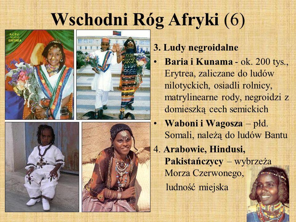 Wschodni Róg Afryki (6) 3. Ludy negroidalne Baria i Kunama - ok. 200 tys., Erytrea, zaliczane do ludów nilotyckich, osiadli rolnicy, matrylinearne rod