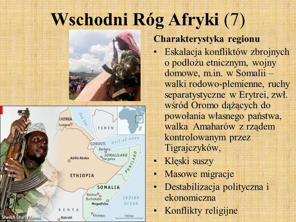 Wschodni Róg Afryki (7) Charakterystyka regionu Eskalacja konfliktów zbrojnych o podłożu etnicznym, wojny domowe, m.in. w Somalii – walki rodowo-plemi