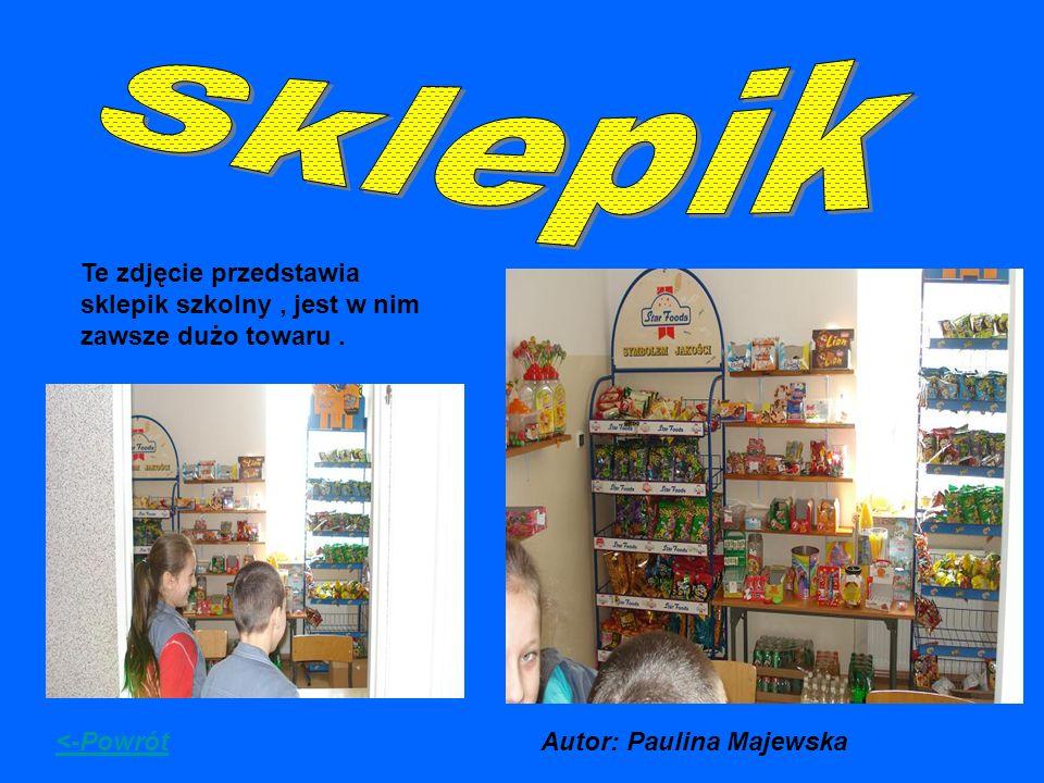 Te zdjęcie przedstawia sklepik szkolny, jest w nim zawsze dużo towaru. <-PowrótAutor: Paulina Majewska