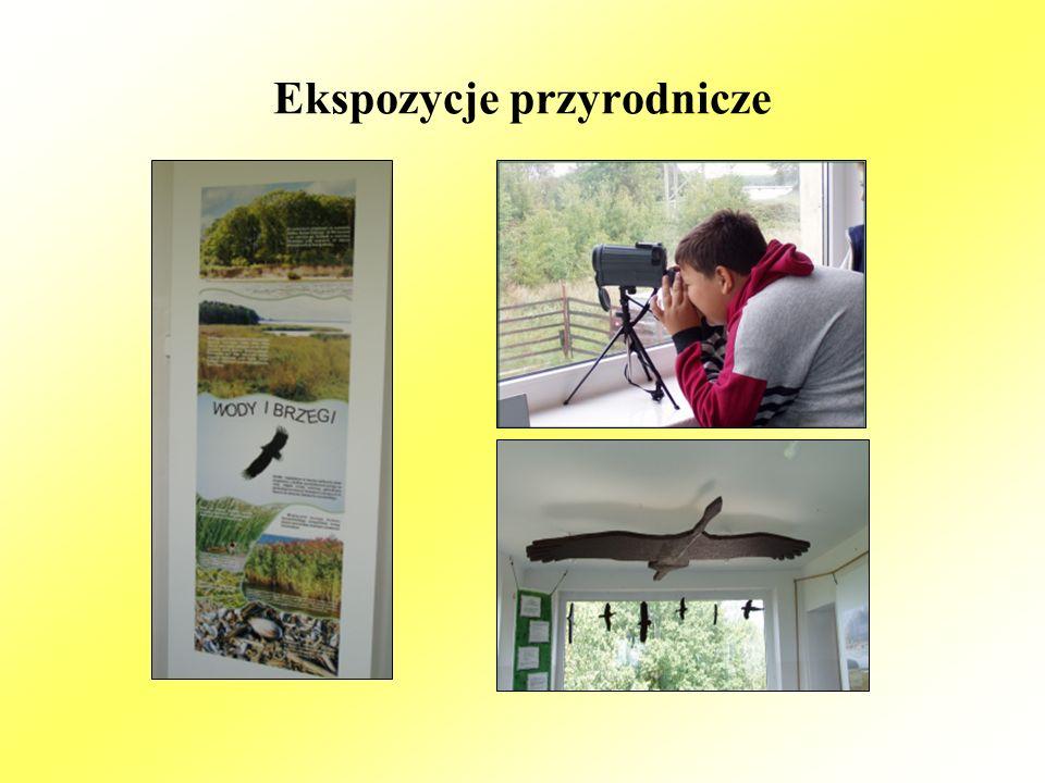 Ekspozycje przyrodnicze