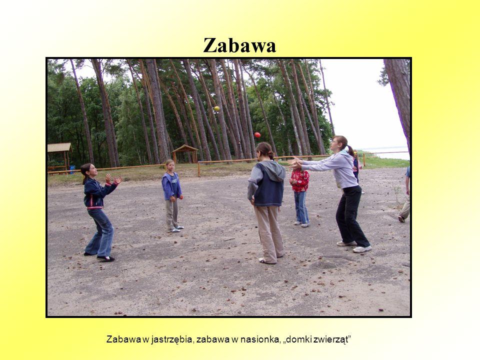 Zabawa i przygoda w edukacji ekologicznej Na przykład mikro wędrówka po trawiastych dżunglach