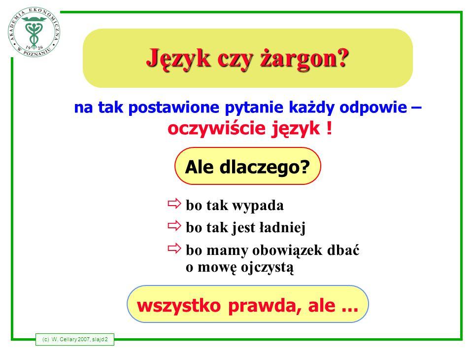 (c) W.Cellary 2007, slajd 3 Dlaczego nie żargon.