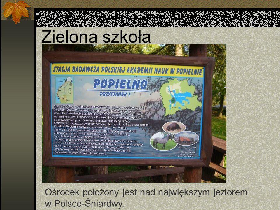 Zielona szkoła Ośrodek położony jest nad największym jeziorem w Polsce-Śniardwy.