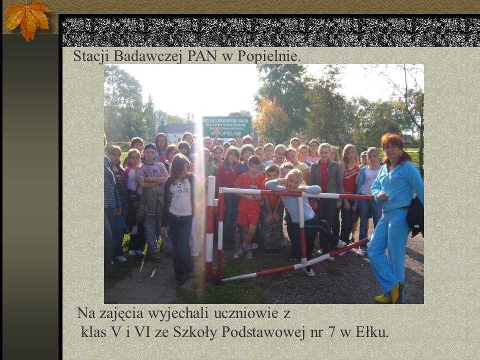 Zajęcia odbyły się na terenie Stacji Badawczej PAN w Popielnie.