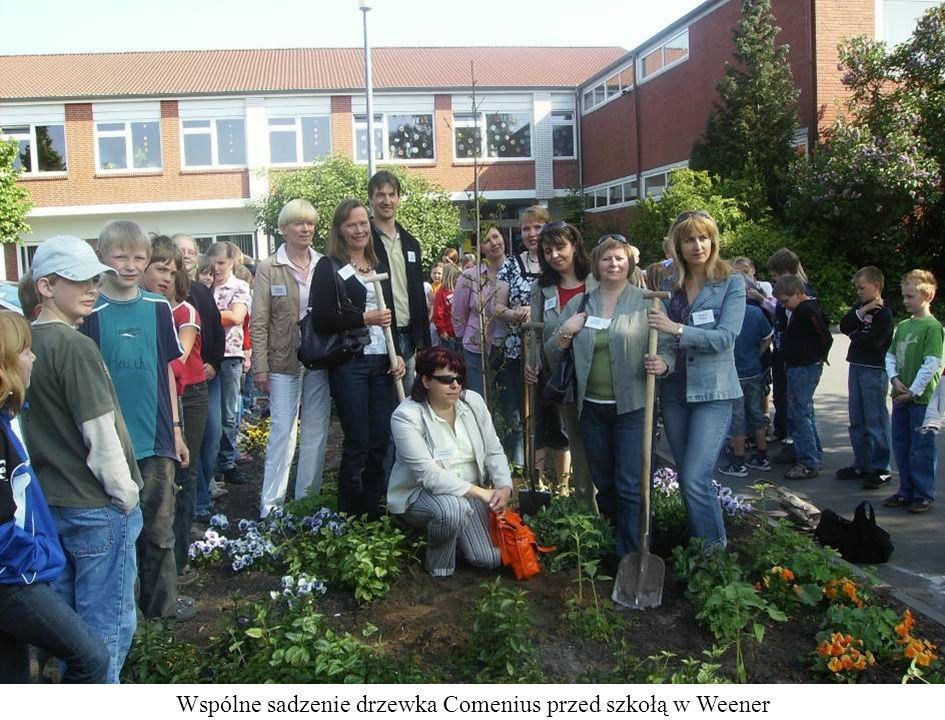 Wspólne sadzenie drzewka Comenius przed szkołą w Weener
