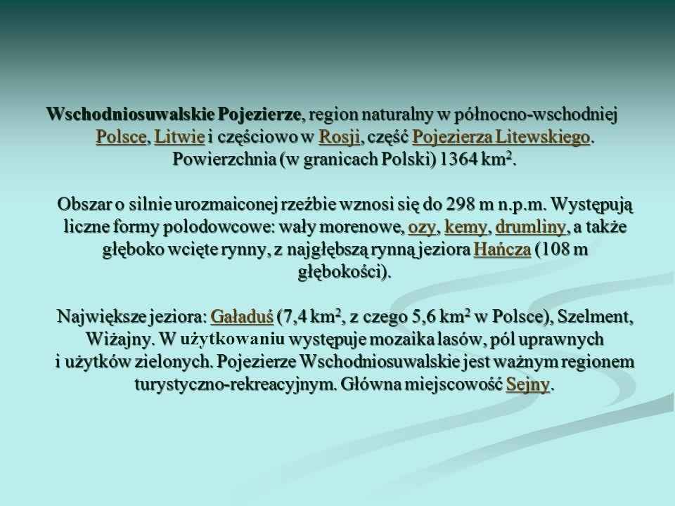 Wschodniosuwalskie Pojezierze, region naturalny w północno-wschodniej Polsce, Litwie i częściowo w Rosji, część Pojezierza Litewskiego. Powierzchnia (