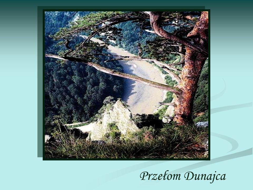 Określenie zamierzeń Przełom Dunajca