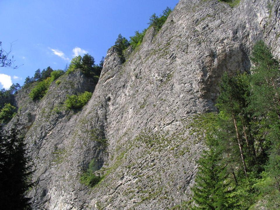 Przełom Dunajca - przełom rzeki Dunajec przez wapienne pasmo górskie Pienin.