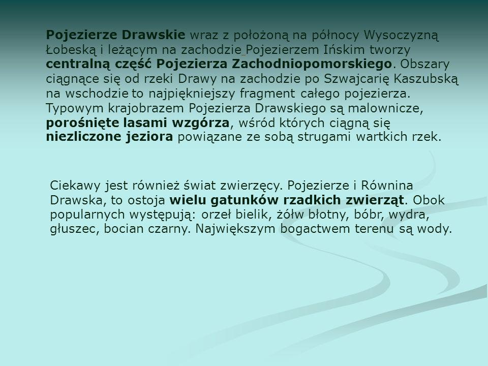 Pojezierze Drawskie wraz z położoną na północy Wysoczyzną Łobeską i leżącym na zachodzie Pojezierzem Ińskim tworzy centralną część Pojezierza Zachodni