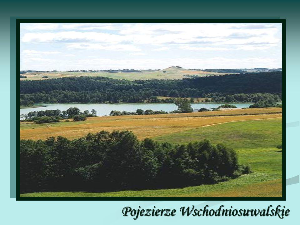Wschodniosuwalskie Pojezierze, region naturalny w północno-wschodniej Polsce, Litwie i częściowo w Rosji, część Pojezierza Litewskiego.