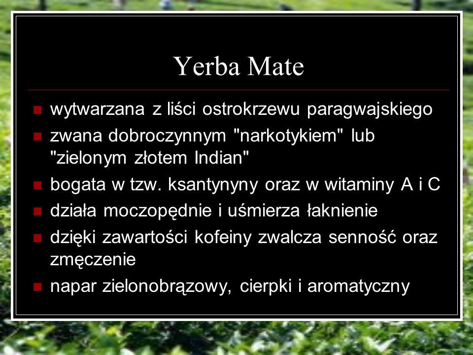 Yerba Mate wytwarzana z liści ostrokrzewu paragwajskiego zwana dobroczynnym narkotykiem lub zielonym złotem Indian bogata w tzw.