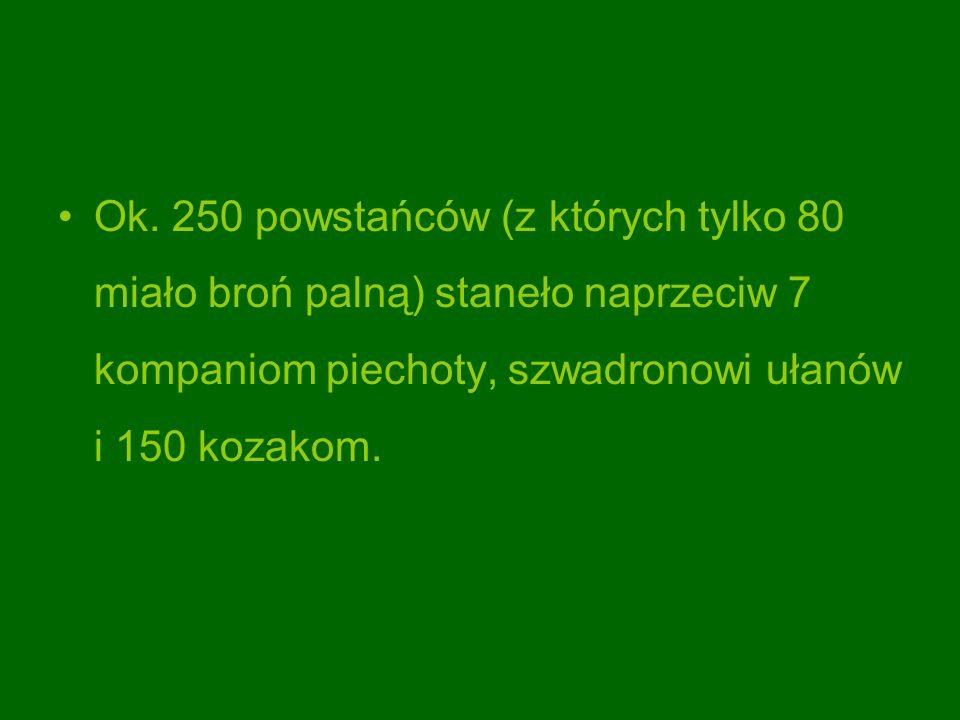 Ok. 250 powstańców (z których tylko 80 miało broń palną) staneło naprzeciw 7 kompaniom piechoty, szwadronowi ułanów i 150 kozakom.