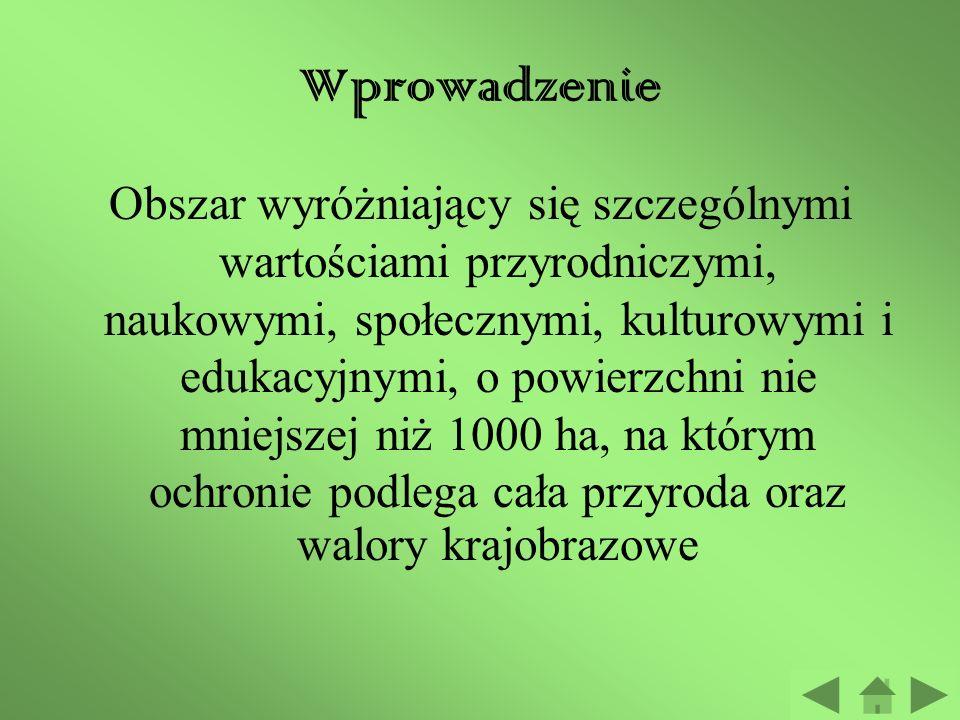 Polskie Parki Narodowe Przewodnik Konkluzja Ewaluacja Źródła Proces Zadanie Wprowadzenie