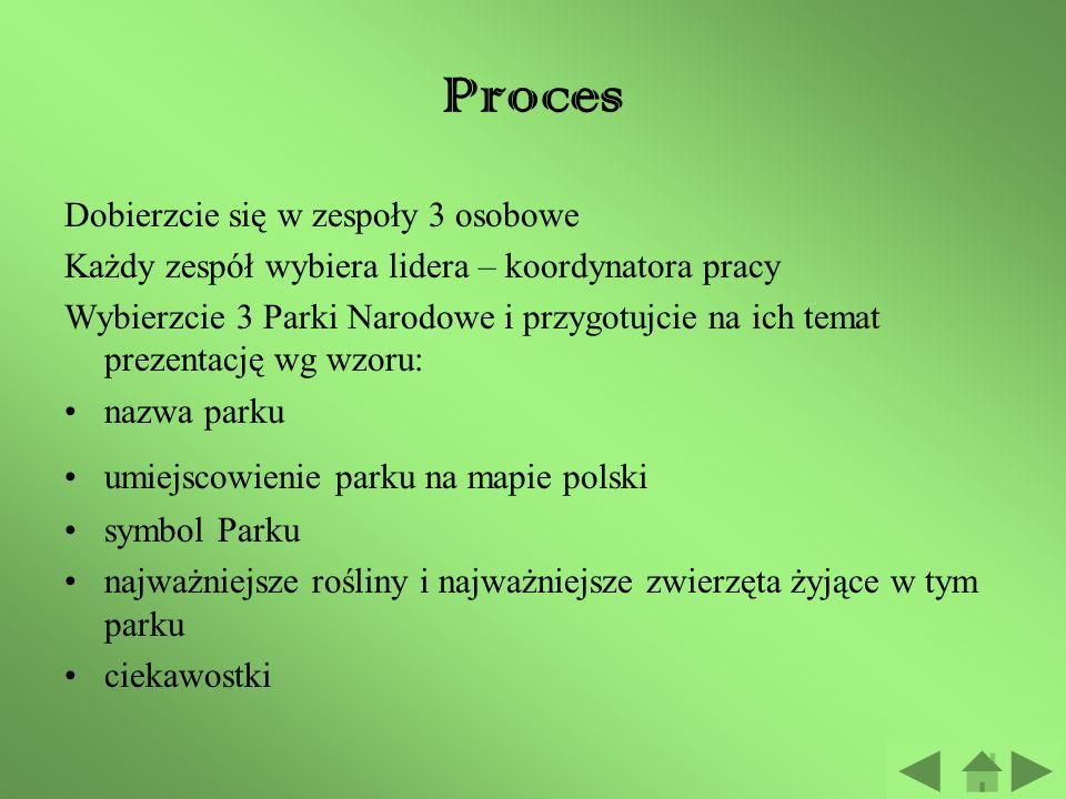 Zadanie Waszym zadaniem jest: Poznać polskie Parki Narodowe Poznać symbole i cechy charakterystyczne poszczególnych parków Wybrać trzy Parki Narodowe