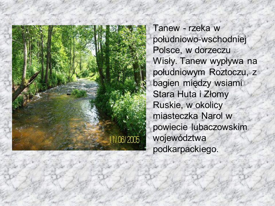 Tanew - rzeka w południowo-wschodniej Polsce, w dorzeczu Wisły.