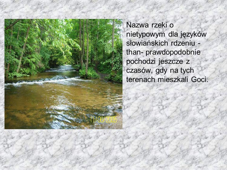 Nazwa rzeki o nietypowym dla języków słowiańskich rdzeniu - than- prawdopodobnie pochodzi jeszcze z czasów, gdy na tych terenach mieszkali Goci.