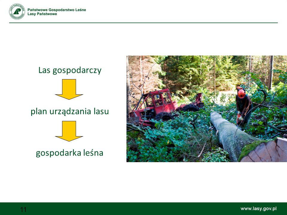 11 Las gospodarczy plan urządzania lasu gospodarka leśna