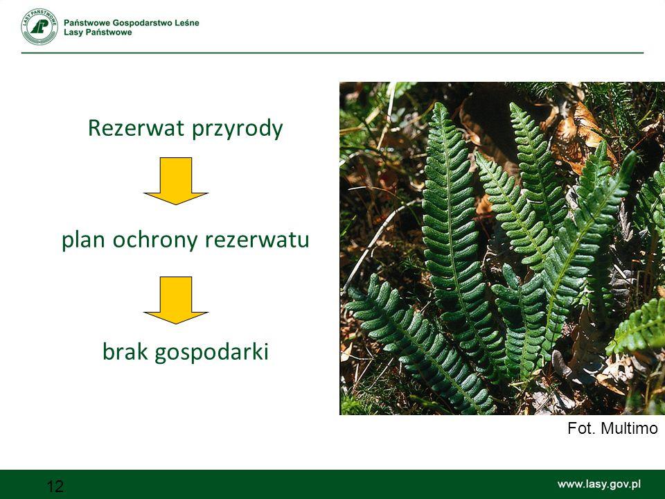 12 Rezerwat przyrody plan ochrony rezerwatu brak gospodarki Fot. Multimo