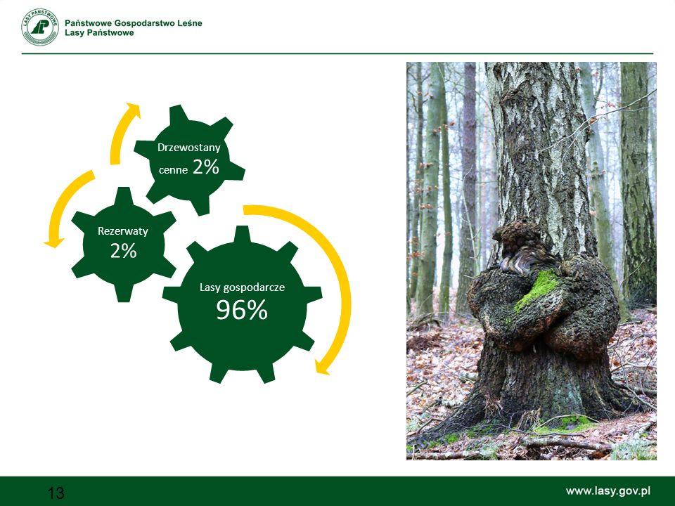 13 Lasy gospodarcze 96% Rezerwaty 2% Drzewostany cenne 2%
