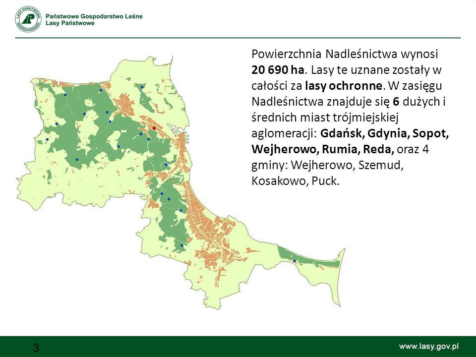 3 Powierzchnia Nadleśnictwa wynosi 20 690 ha.Lasy te uznane zostały w całości za lasy ochronne.