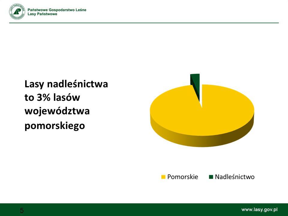 5 Lasy nadleśnictwa to 3% lasów województwa pomorskiego