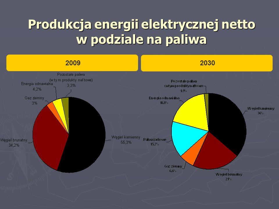 Produkcja energii elektrycznej netto w podziale na paliwa 2008r.2030r. 2009 2030