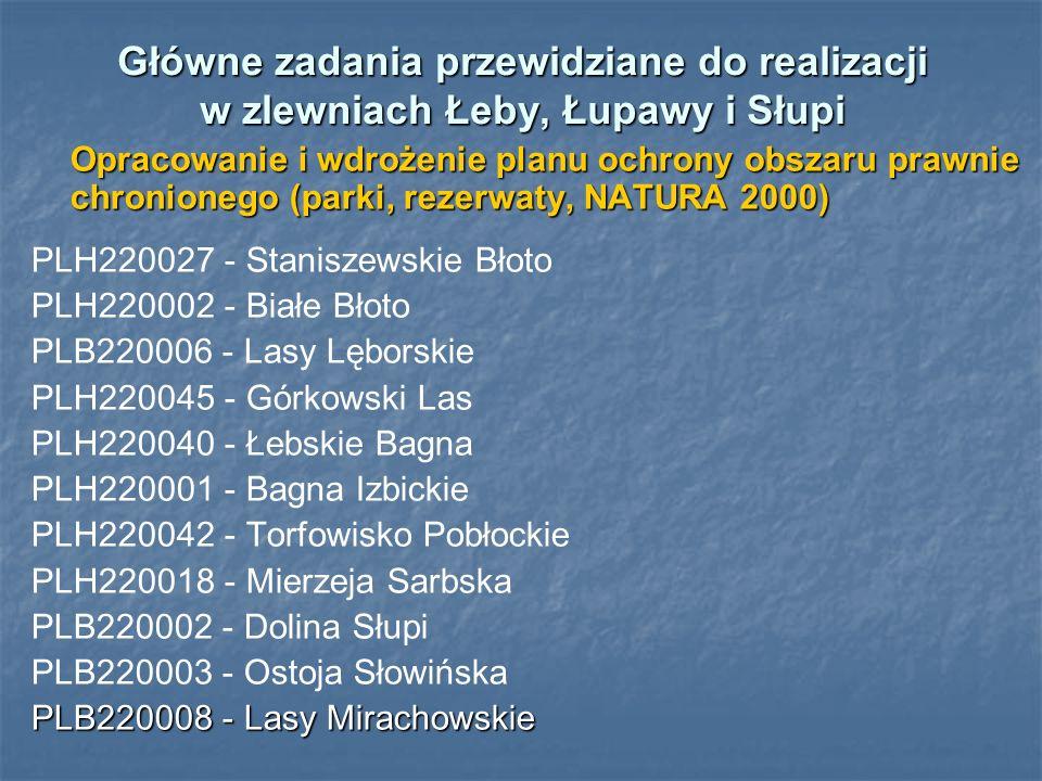 Główne zadania przewidziane do realizacji w zlewniach Łeby, Łupawy i Słupi Opracowanie i wdrożenie planu ochrony obszaru prawnie chronionego (parki, r