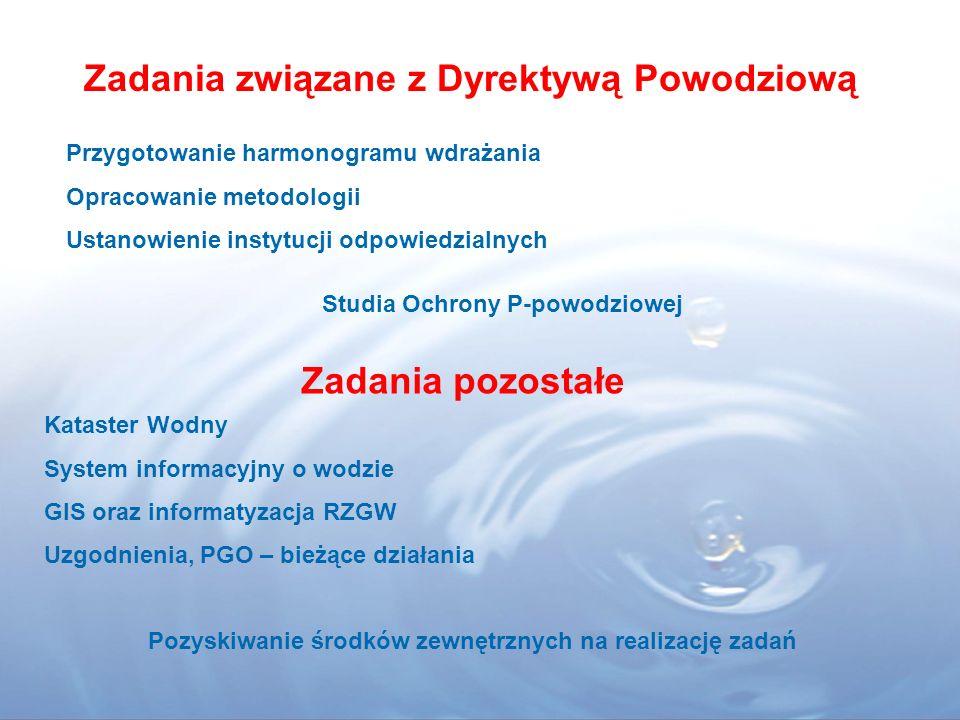 Założenia pracy RGWD w 2008r Spotkania tematyczne Udział członków RGW oraz osób zaproszonych