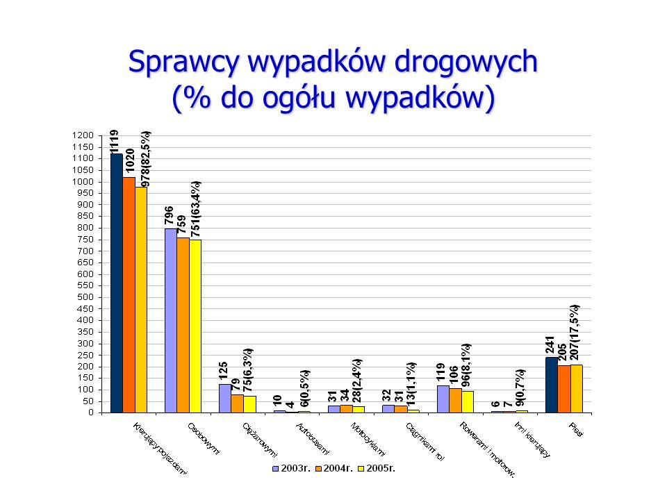 Sprawcy wypadków drogowych (% do ogółu wypadków)
