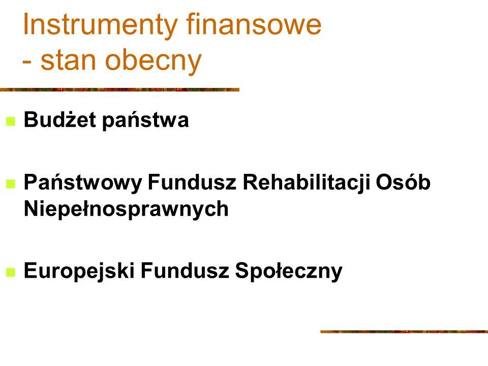 Instrumenty finansowe - stan obecny Budżet państwa Państwowy Fundusz Rehabilitacji Osób Niepełnosprawnych Europejski Fundusz Społeczny