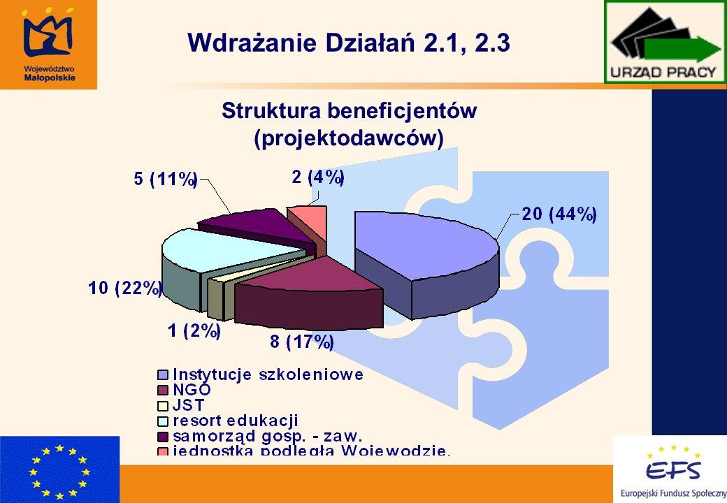 5 Wdrażanie Działań 2.1, 2.3 Struktura beneficjentów (projektodawców)