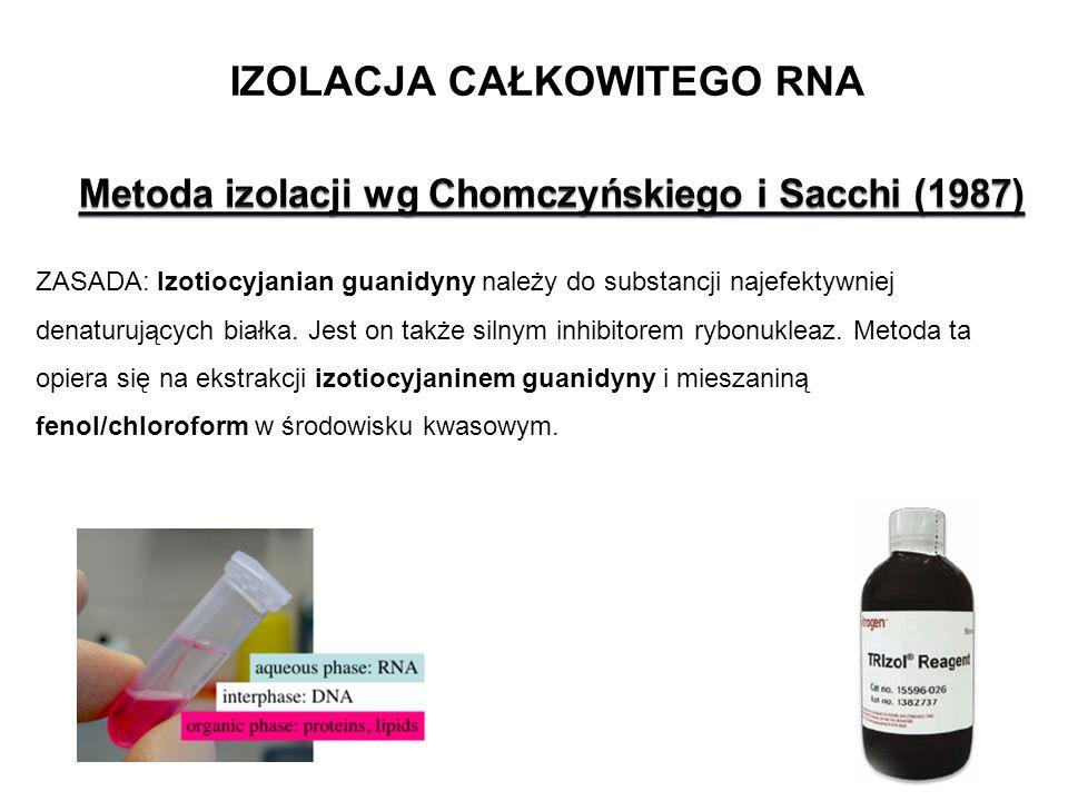 IZOLACJA CAŁKOWITEGO RNA ZASADA: Izotiocyjanian guanidyny należy do substancji najefektywniej denaturujących białka. Jest on także silnym inhibitorem