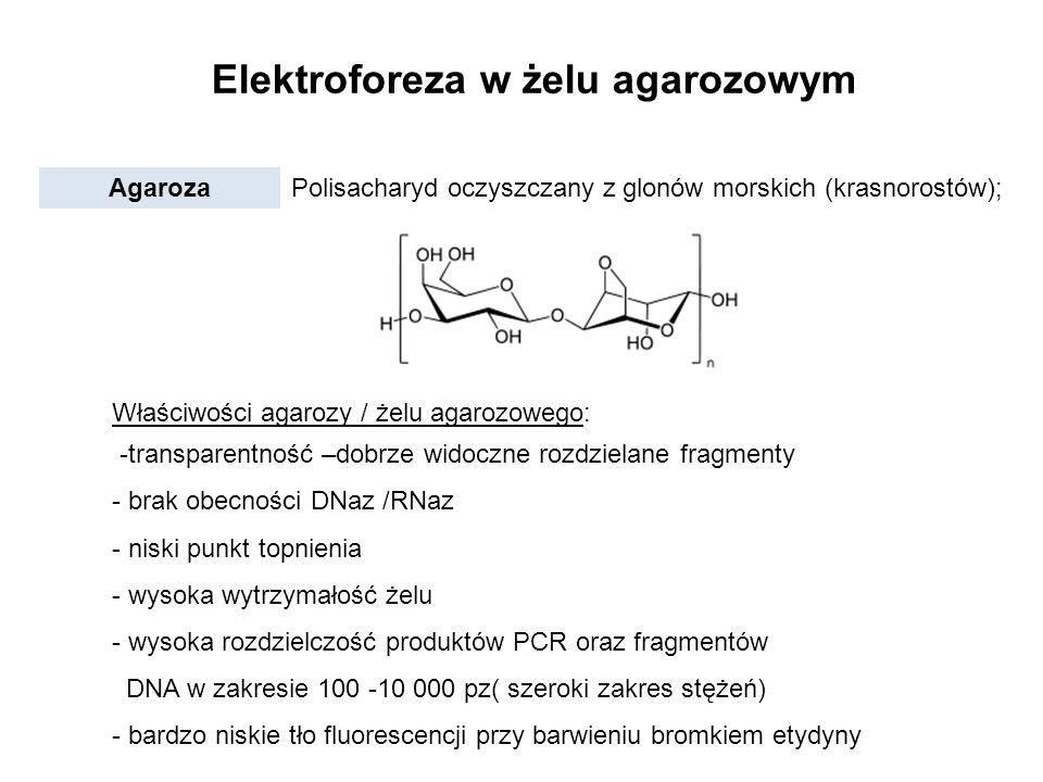 Elektroforeza w żelu agarozowym Agaroza Polisacharyd oczyszczany z glonów morskich (krasnorostów); Właściwości agarozy / żelu agarozowego: -transparen