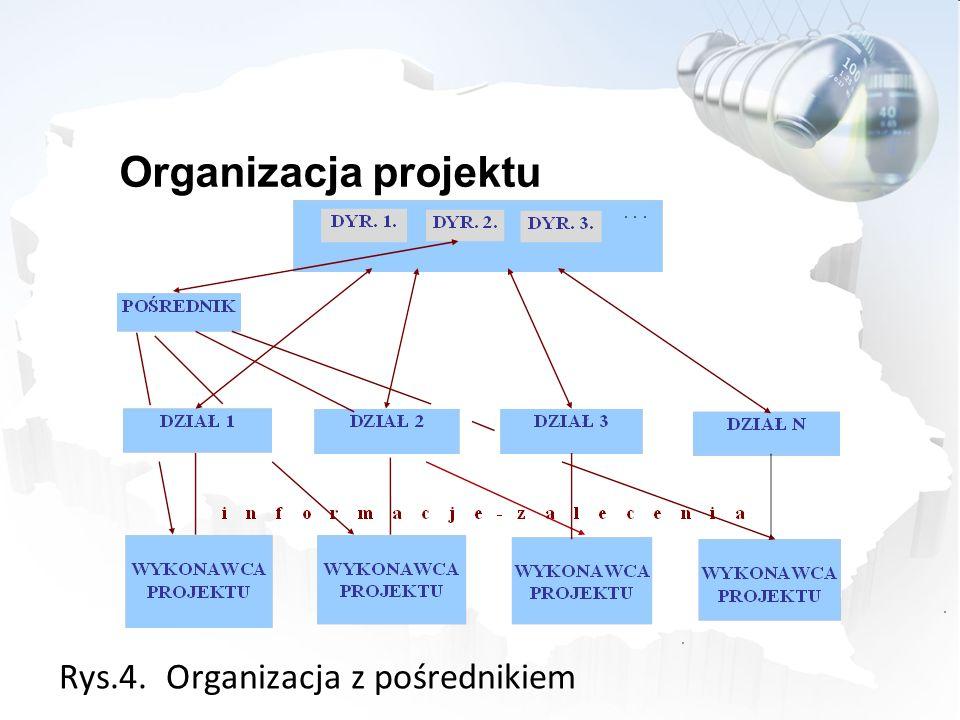 Rys.4. Organizacja z pośrednikiem Organizacja projektu