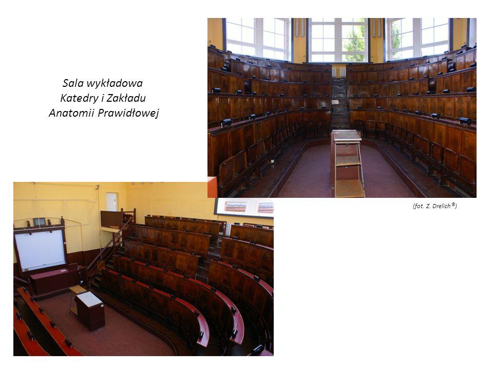 Sala wykładowa Katedry i Zakładu Anatomii Prawidłowej (fot. Z. Drelich ® )