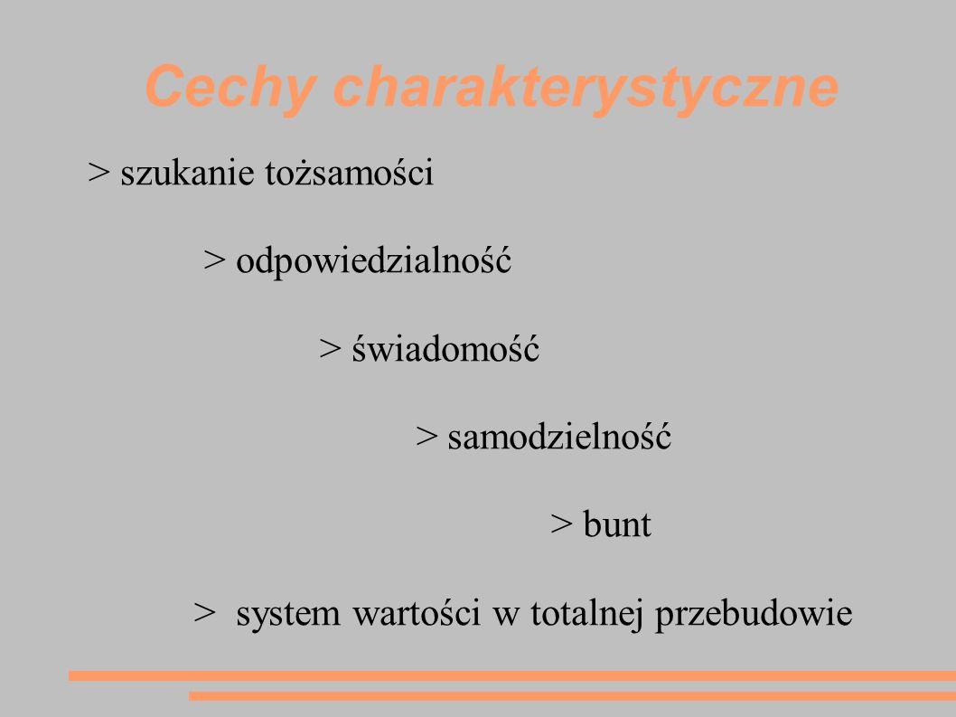 Cechy charakterystyczne > szukanie tożsamości > odpowiedzialność > świadomość > samodzielność > bunt > system wartości w totalnej przebudowie