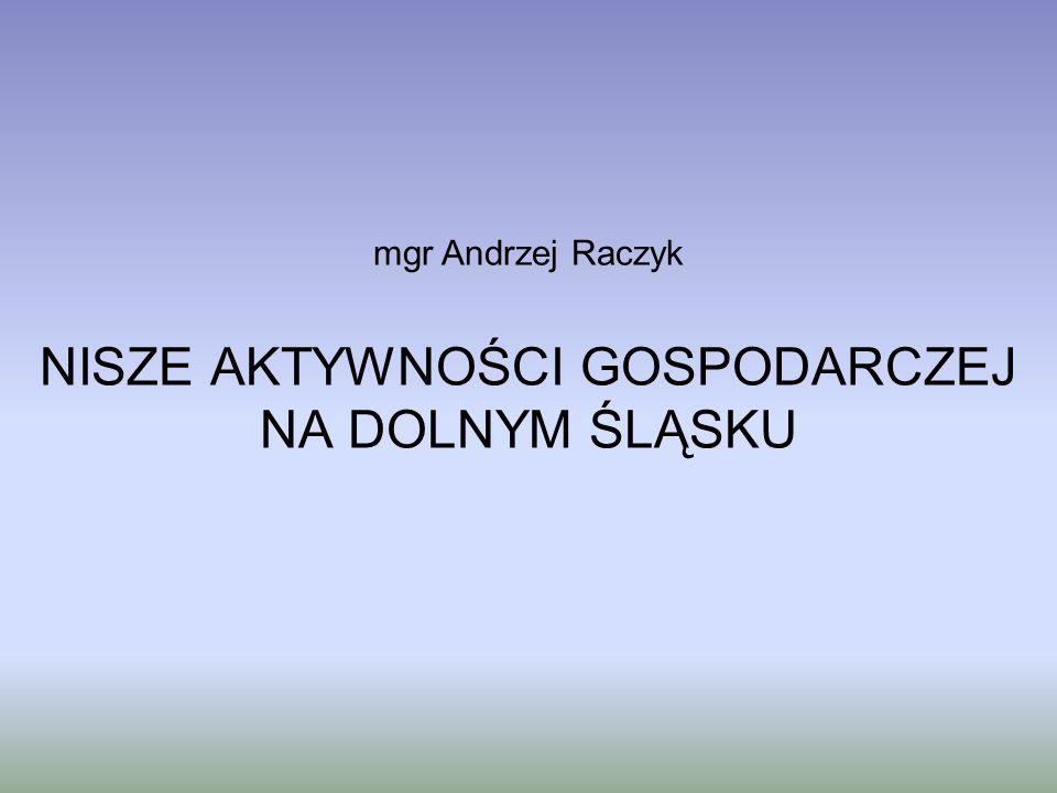 NISZE AKTYWNOŚCI GOSPODARCZEJ NA DOLNYM ŚLĄSKU mgr Andrzej Raczyk