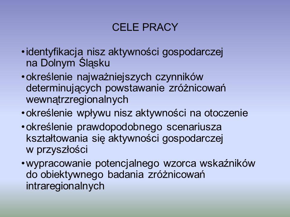 identyfikacja nisz aktywności gospodarczej na Dolnym Śląsku określenie najważniejszych czynników determinujących powstawanie zróżnicowań wewnątrzregio