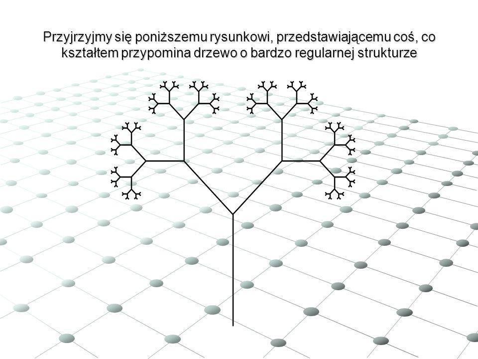 Pierwsze konstrukcje fraktali Pierwsze matematyczne konstrukcje fraktali podano na przełomie XIX i XX wieku.