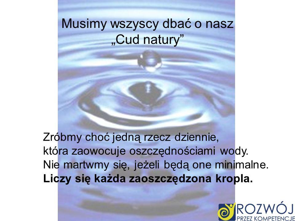Musimy wszyscy dbać o nasz Cud natury Zróbmy choć jedną rzecz dziennie, która zaowocuje oszczędnościami wody. Nie martwmy się, jeżeli będą one minimal