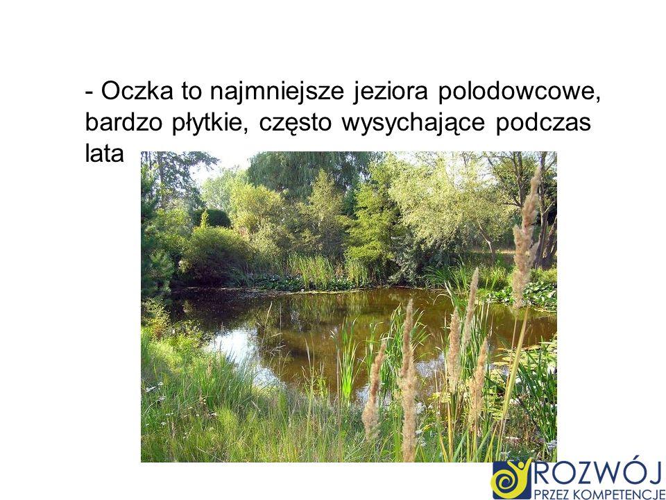 - Oczka to najmniejsze jeziora polodowcowe, bardzo płytkie, często wysychające podczas lata