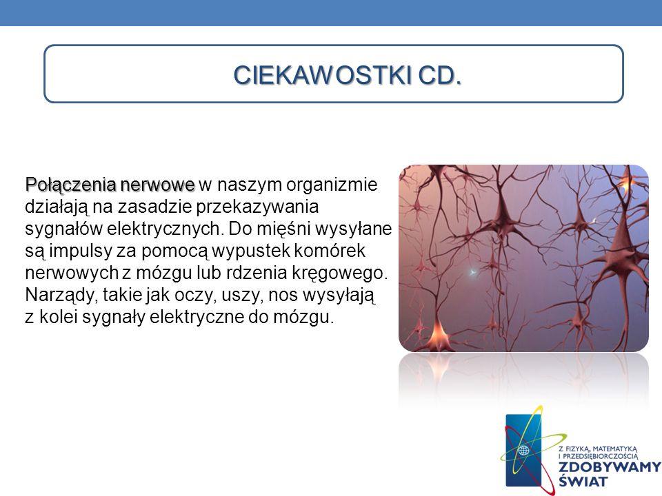 CIEKAWOSTKI CD. Połączenia nerwowe Połączenia nerwowe w naszym organizmie działają na zasadzie przekazywania sygnałów elektrycznych. Do mięśni wysyłan