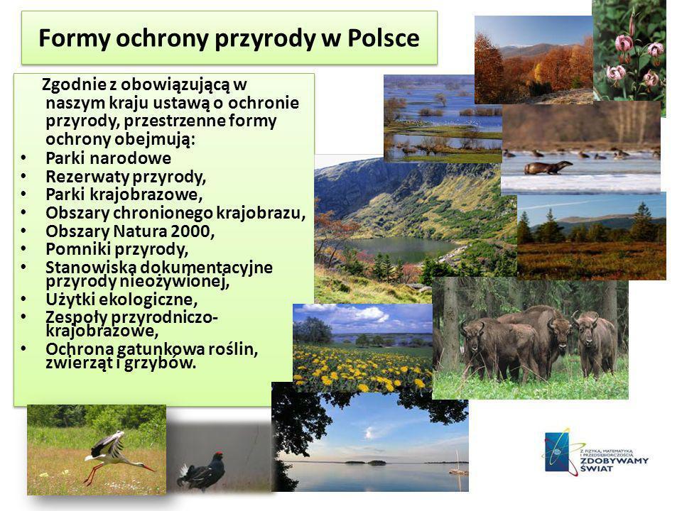 Formy ochrony przyrody w Polsce Zgodnie z obowiązującą w naszym kraju ustawą o ochronie przyrody, przestrzenne formy ochrony obejmują: Parki narodowe Rezerwaty przyrody, Parki krajobrazowe, Obszary chronionego krajobrazu, Obszary Natura 2000, Pomniki przyrody, Stanowiska dokumentacyjne przyrody nieożywionej, Użytki ekologiczne, Zespoły przyrodniczo- krajobrazowe, Ochrona gatunkowa roślin, zwierząt i grzybów.