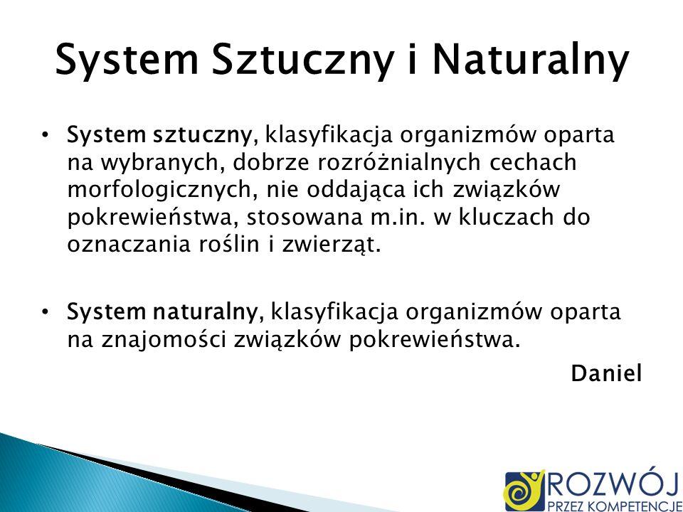 System Sztuczny i Naturalny System sztuczny, klasyfikacja organizmów oparta na wybranych, dobrze rozróżnialnych cechach morfologicznych, nie oddająca