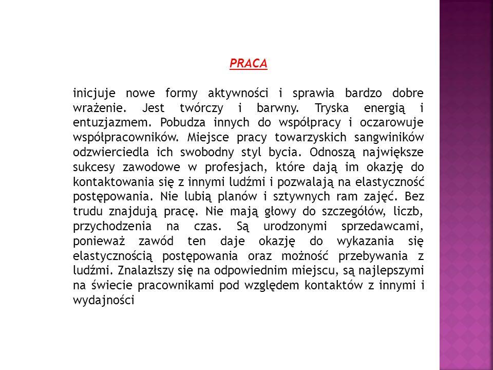 PRACA inicjuje nowe formy aktywności i sprawia bardzo dobre wrażenie. Jest twórczy i barwny. Tryska energią i entuzjazmem. Pobudza innych do współprac