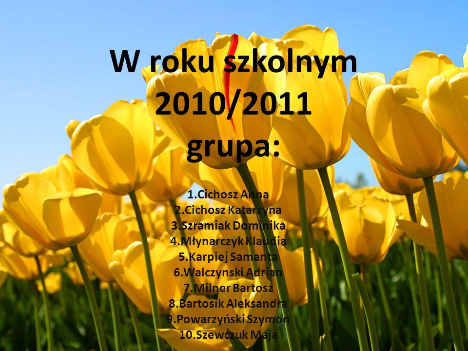 W roku szkolnym 2010/2011 grupa: 1.Cichosz Anna 2.Cichosz Katarzyna 3.Szramiak Dominika 4.Młynarczyk Klaudia 5.Karpiej Samanta 6.Walczynski Adrian 7.M
