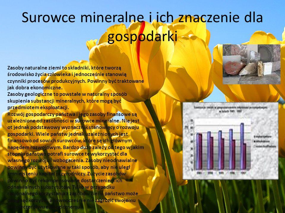 Surowce mineralne i ich znaczenie dla gospodarki Zasoby naturalne ziemi to składniki, które tworzą środowisko życia człowieka i jednocześnie stanowią